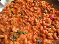 cellantani-in-a-creamy-tomato-sauce
